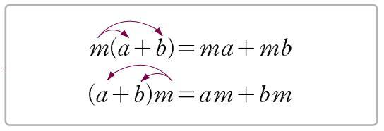분배법칙 모양을 통한 설명